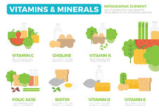 Vitamins and Minerals Infographic Element Royalty Free Stock Photos