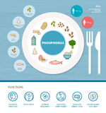Vitamins and minerals. Phosphorus mineral nutrition infographic with medical and food icons: diet, healthy food and wellbeing concept Stock Image