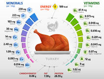 Vitamins and minerals of roast turkey. Infographics about nutrients in cooked turkey meat. Qualitative vector illustration for turkey, vitamins, poultry meat Royalty Free Stock Photos