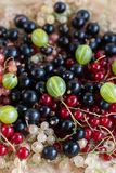 Vitamins. Summer berries. Red currant background. Close up, selective focus. Harvest Concept. Vitamins. Summer berries. Mix of ripe organic Red, black, rose royalty free stock photos
