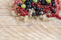 Vitamins. Summer berries. Red currant background. Close up, selective focus. Harvest Concept stock photo