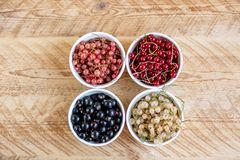Vitamins. Summer berries. Red currant background. Close up, selective focus. Harvest Concept royalty free stock photos