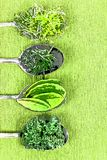 Vitamins - various herbs on spoons Stock Photography