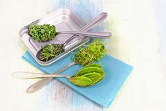 Vitamins - various herbs on spoons Royalty Free Stock Photography