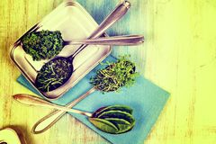 Vitamins - various herbs on spoons Royalty Free Stock Images