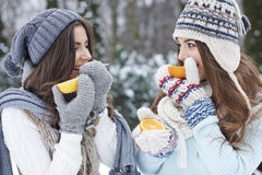 Vitamins in the winter Stock Image