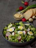 Vitaminsalat vom Kopfsalat, Rettich, Frühlingszwiebeln und Eier, würzte mit Pflanzenöl und Senf in der Platte auf grauem konkrete Stockbild