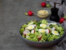 Vitaminsalat vom Kopfsalat, Rettich, Frühlingszwiebeln und Eier, würzte mit Pflanzenöl und Senf in der Platte auf grauem konkrete Lizenzfreies Stockfoto