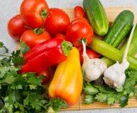 Vitaminset av grönsaker Arkivfoto