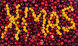 vitaminxmas Royaltyfria Bilder