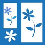 Vitbokutklippblomma på blå bakgrund Royaltyfri Foto