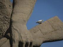 Vitduvan av fred på skulptur blir till döds arkivfoto