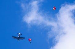 Vitebsk Białoruś, Sierpień, - 2, 2015: spadochroniarzi podczas świętowania spadochroniarzów VDV dzień na 2 2015 w Viteb Sierpień Obraz Royalty Free