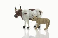 Vitello del bambino e giocattolo della mucca Immagine Stock