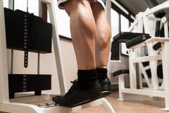 Vitello sportivo delle gambe Immagini Stock Libere da Diritti