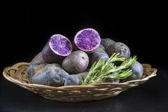 Vitelotte or blue-violet potatoes Royalty Free Stock Photo