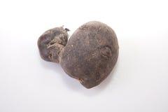 Vitelotte potatoe Royalty Free Stock Photography