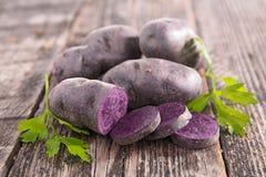 Vitelotte, raw potato Royalty Free Stock Photo