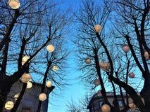 Viterbo, een oude stad in het Lazio gebied, Italië Bomen en Kerstmis royalty-vrije stock foto's