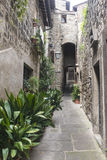 Viterbo (Italy) Royalty Free Stock Images