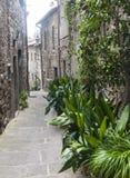 Viterbo (Italy) Stock Photography