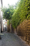 Viterbo, medieval town Stock Photos