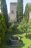 Viterbo, old well and garden Stock Image