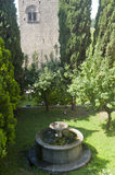 Viterbo, old well and garden Royalty Free Stock Photography