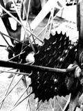 Vitesse de vélo photographie stock libre de droits