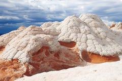 Vitfack, nationell monument för cinnoberfärgklippor, Arizona Fotografering för Bildbyråer