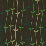 Viti della pianta su un modello di Wall_Seamless Immagine Stock Libera da Diritti