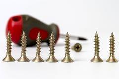 Viti e cacciavite di metallo sopra fondo bianco Fotografia Stock Libera da Diritti