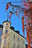 Viti selvatiche e una facciata della casa con le pitture di parete St Gilgen, Austria, Europa Fotografia Stock Libera da Diritti