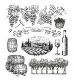 Viticulture big set. Royalty Free Stock Photography