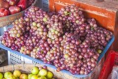 Vitis vinifera grapes Royalty Free Stock Images