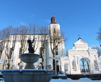 Vitkyrka, Litauen Royaltyfri Fotografi