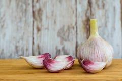 Vitlök grönsak, krydda Fotografering för Bildbyråer
