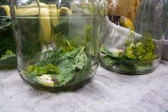Vitlök, kryddor och örter i en glass krus för att grava Arkivfoto