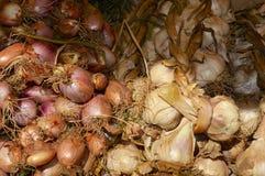 Vitlök och grönsaker på försäljning i marknaden i Le Touquet, Pas de Calais, Frankrike Royaltyfri Fotografi