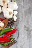 Vitlök, peppar och rosmarinsidocopyspace Royaltyfri Bild