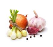Vitlökkryddnejlika, lök, röd peppar och kryddor Fotografering för Bildbyråer