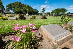 Vitmics chrétien de pierre tombale vide de cimetière avec la fleur rose le sien photo stock
