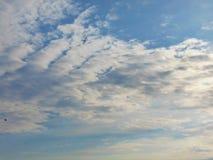 Vitmoln mot behandla som ett barn blå himmel royaltyfria foton