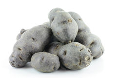 Vitolette noir or purple potato Stock Photography