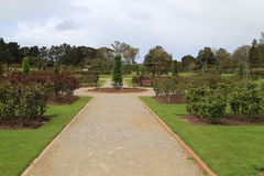 Vitoria state rose garden in melbourne,australia Stock Photos