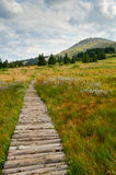 Vitosha βουνό Στοκ Φωτογραφία