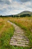 Vitosha mountain Stock Images
