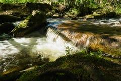 Vitosha Natuurreservaat dichtbij Sofia, Bulgarije Het Gouden Bruggengebied Het landschap van de waterstroom Royalty-vrije Stock Foto