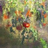 Vitral abstrato colorido Reflexão dos vegetais na janela fotos de stock