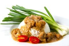 Rice med kycklinggrytan royaltyfria bilder